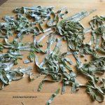 Tagliatelle verdi per riciclare le ortiche