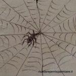 Come eliminare ragnatele 😲