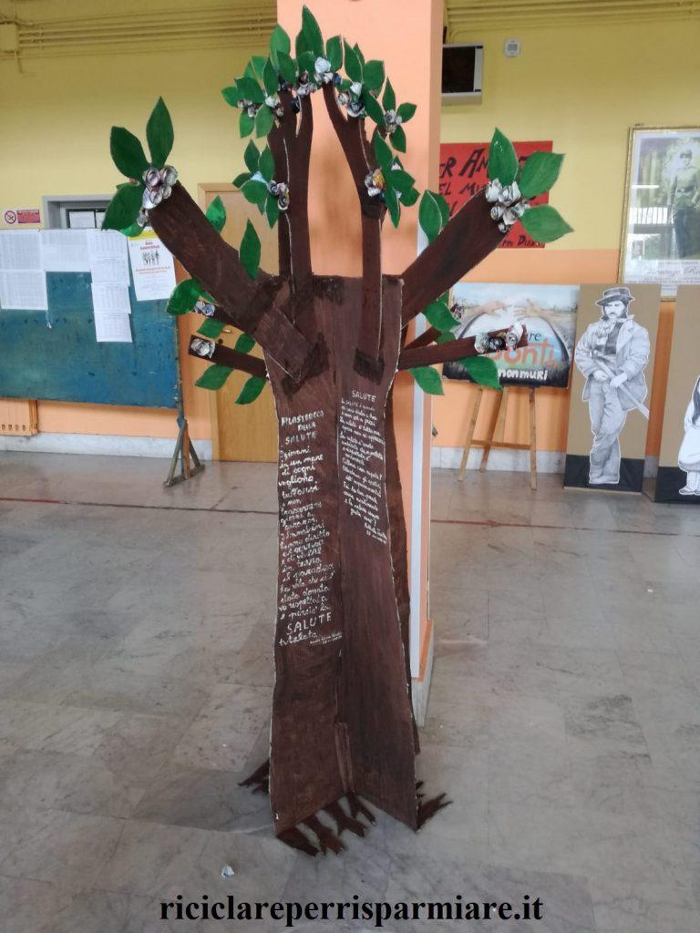 15 Marzo, albero della salute